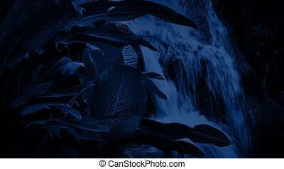 Waterfall In The Jungle At Night