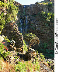 Waterfall in the mountains close up. Africa, Ethiopia.