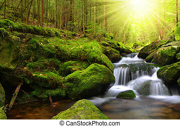 Waterfall in the national park Sumava