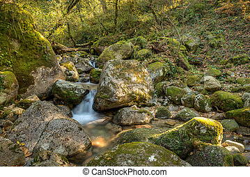 Waterfall in the portuguese national park of Geres