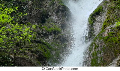 Waterfall in the Republic of Abkhazia North Caucasus close up