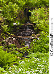 Waterfall in the Thuringian Forest