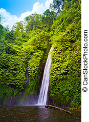 Waterfall in the tropical forest. Munduk, Bali