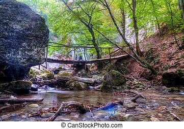waterfall in the wood