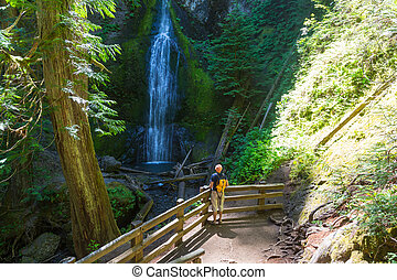 Waterfall in Vancouver island