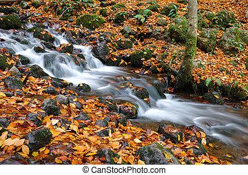 Waterfall in Yedigoller National Park, Bolu, Turkey - ...