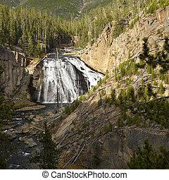 Waterfall in Yellowstone Park.