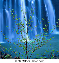 Waterfall - Jiuzhaigou Valley Scenic and Historic Interest ...