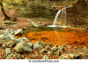 waterfall., leaves., autumn., forest., water., stones.