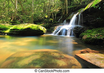 Waterfall located in deep forest at Phu Kradung national park, Loei province, Thailand