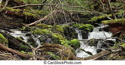 Waterfall long exposure, Ushuaia