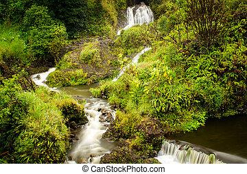 Waterfall on Maui