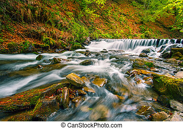 Waterfall on mountain river in autumn forest
