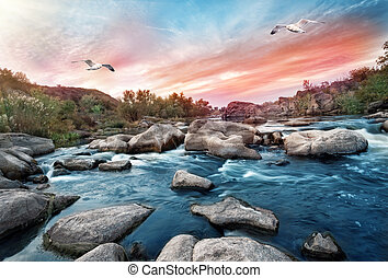 Waterfall on mountain river with seagulls