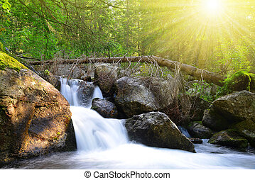 Waterfall on stream in High Tatras mountains