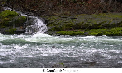 Waterfall Runs off into the Umpqua River Oregon Forest...