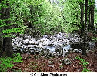 Waterfall Savica