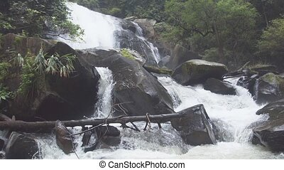 Whitewater roars and hisses as it tumbles over and around boulders in this tropical rainforest wilderness in Thailand.