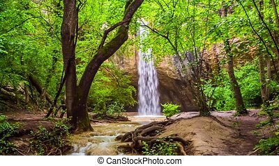 Waterfall with a river in the forest