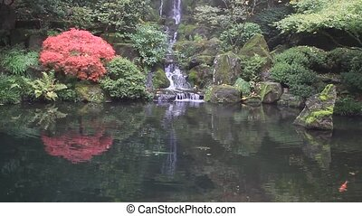 Waterfall with Koi Fish in Garden