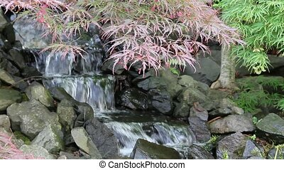 Waterfall with Maple Trees Garden