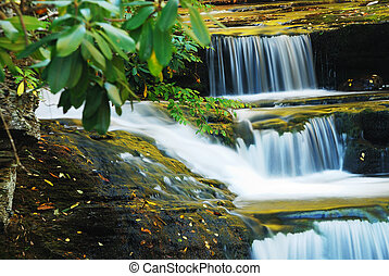 Waterfall woods - Waterfall in woods with rocks