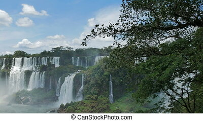 Waterfalls and wild vegetation in the Iguazu National Park...