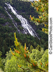 Waterfalls in mountain forest
