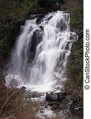 Waterfalls - Waterfall in Mount Rainer National Park,...
