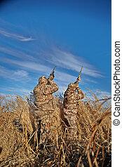 waterfowl, jagers, mikkend, op, in, hemel, op, zonnige dag
