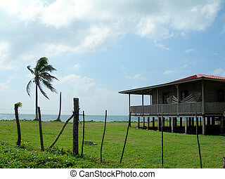 waterfront house with palm coconut tree corn island nicaragua