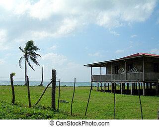 waterfront house with palm coconut tree corn island nicaragua