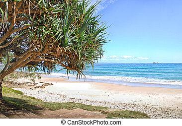 watergoes, praia, em, byron, baía, em, austrália