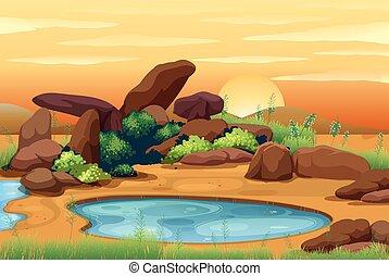 waterhole, coucher soleil, scène