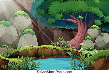 waterhole, floresta, cena