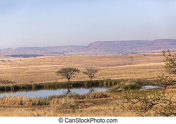Waterhole Rural Landscape