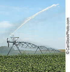 Watering a Soybean Crop