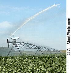 Watering a Soybean Crop