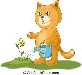watering, bloem, kat
