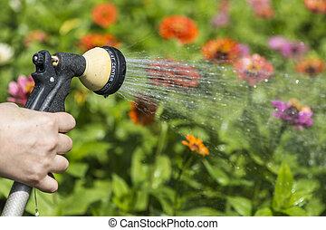 watering, bloemtuin