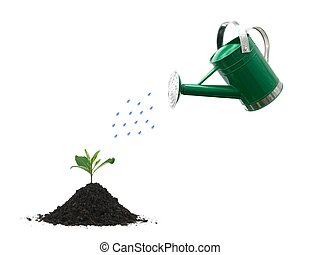 A watering can isolated against a white background