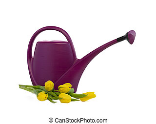 watering can and bouquet of yellow tulips