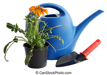 Watering can and  flower