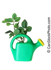 Watering Can and Leaves