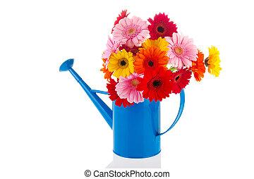 Watering can flowers