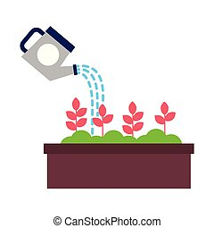 watering can pouring water flowers in pot