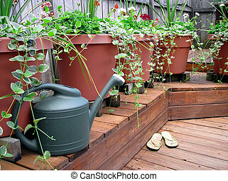 watering can by flower pots on wooden deck