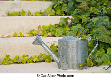 Watering can surrounded by lush ivy