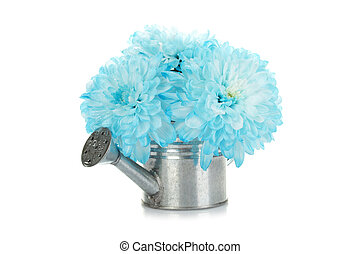 Watering can with blue flowers