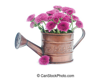 watering can with flowers isolated on white
